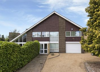 Thumbnail 5 bed detached house to rent in Drakes Close, Esher, Surrey
