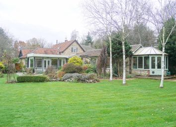 Thumbnail 4 bed detached house for sale in Chardstock, Axminster