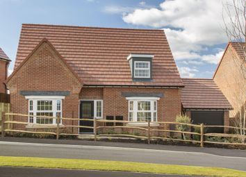 "Thumbnail 4 bed bungalow for sale in ""Hampton"" at Chalton Lane, Clanfield, Waterlooville"