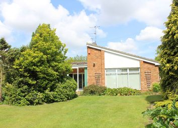 Thumbnail 4 bed bungalow to rent in Marcus Road, Felixstowe