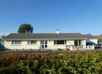 Thumbnail 5 bed detached bungalow for sale in Cross Inn, Nr New Quay, Ceredigion