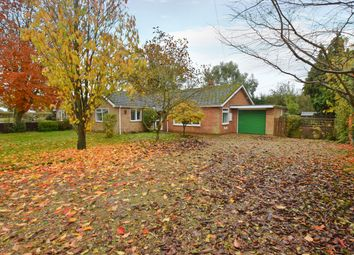 Thumbnail 4 bed detached bungalow to rent in The Fairstead, Scottow, Norwich
