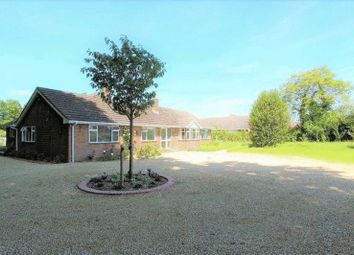 Thumbnail 4 bed bungalow to rent in Mount Hermon Road, Palestine, Andover