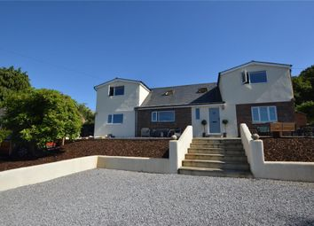 Thumbnail 4 bed detached house for sale in Yonder Street, Ottery St. Mary, Devon