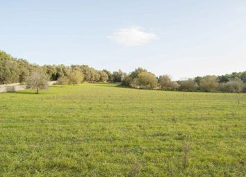 Thumbnail Land for sale in Algaida Campo, Algaida, Spain