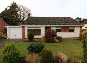 Thumbnail 3 bed detached bungalow to rent in Greenacres, Wetheral, Carlisle, Cumbria