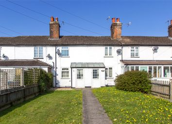 Thumbnail 2 bed terraced house for sale in Elm Cottages, Godstone Hill, Godstone, Surrey