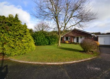 Thumbnail 3 bed bungalow to rent in Mead End, Ashtead