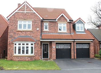 Thumbnail 5 bed property to rent in Cleminson Gardens, Cottingham