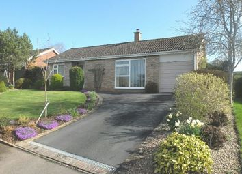 Thumbnail 3 bed detached bungalow for sale in Pound Meadow, Ledbury
