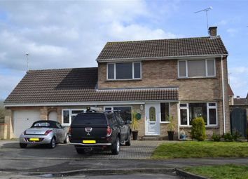 Thumbnail 3 bed detached house for sale in Shapwick Close, Swindon