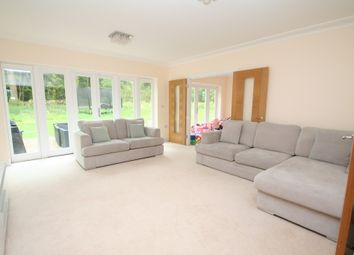 Thumbnail 4 bed detached bungalow to rent in Woods Green, Wadhurst