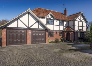 Thumbnail 4 bed detached house for sale in Damgate Lane, Acle, Norwich