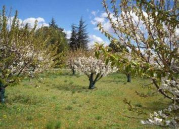 Thumbnail Land for sale in 11160 Trausse, France