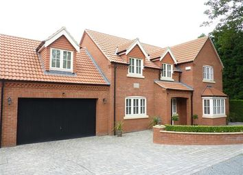 Thumbnail 4 bed detached house for sale in Brigsley Road, Waltham, Grimsby