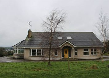 Thumbnail 4 bedroom detached bungalow for sale in Mullaghbawn, Newry