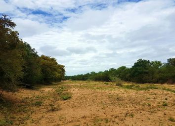 Thumbnail Land for sale in R527, Hoedspruit, 1380, South Africa