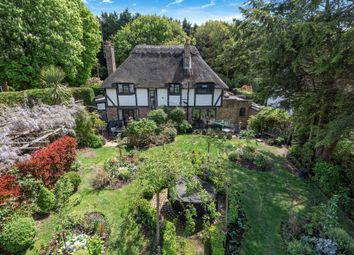 Lammas Lane, Esher KT10, south east england property