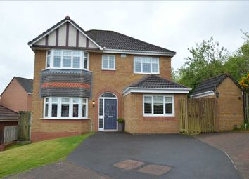 Thumbnail 4 bed detached house for sale in Skylands Place, Hamilton