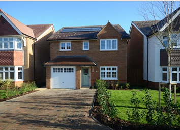 Thumbnail 4 bedroom detached house to rent in Martinet Road, Woodley, Reading