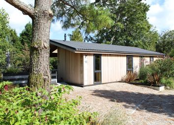 Thumbnail 2 bed detached bungalow for sale in Palstone Lane, South Brent