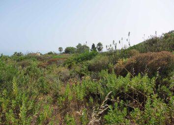 Thumbnail Land for sale in San Roque, San Roque, Spain