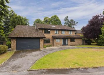 Thumbnail 5 bedroom detached house to rent in Milner Drive, Cobham