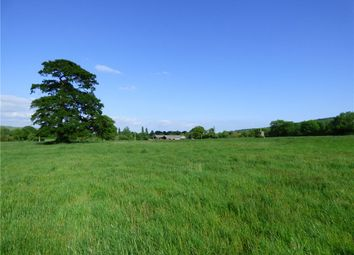 Thumbnail Farm for sale in Shillingstone Lane, Okeford Fitzpaine, Blandford Forum