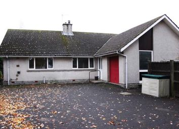 Thumbnail 3 bed bungalow to rent in Church Street, Edzell, Brechin