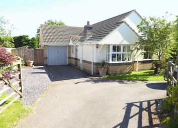 Thumbnail 3 bed bungalow for sale in Kings Farm Lane, Winkleigh