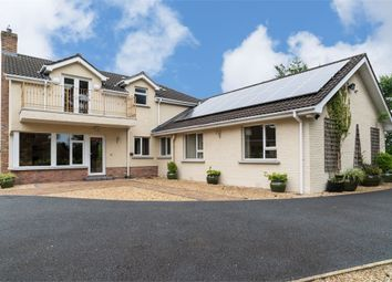 Thumbnail 5 bed detached house for sale in Tandragee Road, Portadown, Craigavon, County Armagh