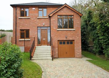Thumbnail 5 bed detached house for sale in North Road, Conlig, Newtownards