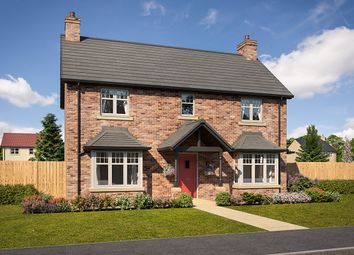 "Thumbnail 4 bed detached house for sale in ""Matfen"" at Mason Avenue, Consett"