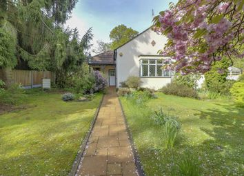 Thumbnail 4 bed bungalow for sale in Westwood Road, Windlesham