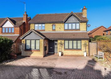 Thumbnail 4 bed detached house for sale in Magnolia Close, Hertford, Herts