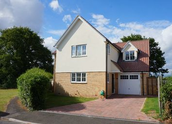 Thumbnail 4 bed detached house for sale in Notcutts, East Bergholt, Colchester, Suffolk