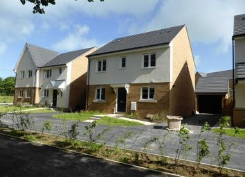 Thumbnail 4 bed detached house to rent in Shearwater Drive, Bude, Cornwall