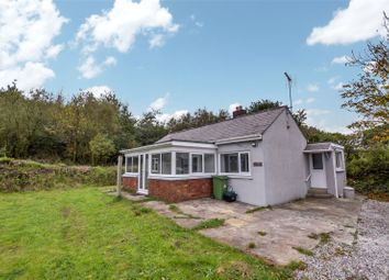 Thumbnail 2 bed bungalow to rent in Bridgerule, Holsworthy