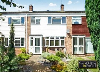Thumbnail 3 bed property to rent in Woodfield, Wickford, Essex