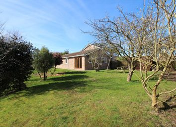 Thumbnail 3 bed detached bungalow for sale in Brooklands Road, Brantham, Manningtree