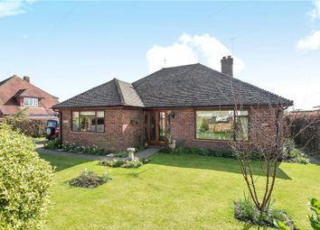 Thumbnail 3 bed detached bungalow for sale in Sopers Field, Chard, Somerset