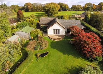 Thumbnail 4 bed detached bungalow for sale in Welsh Newton Common, Monmouth