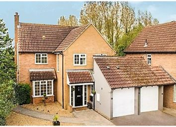 Thumbnail 4 bed link-detached house for sale in Vicarage Green, Thurleigh, Bedford