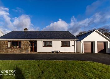 Thumbnail 3 bed detached house for sale in Talgarreg, Llandysul, Ceredigion