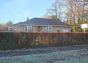 Thumbnail 3 bed detached bungalow for sale in Salisbury Road, Plaitford, Romsey