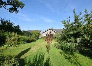 Thumbnail 5 bed detached bungalow for sale in Swiftness, Mockerkin, Cockermouth, Cumbria