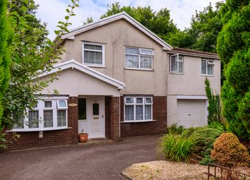 Thumbnail 4 bed detached house for sale in Betws Road, Betws, Ammanford
