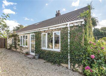 Thumbnail 4 bed detached bungalow for sale in Bridport Road, Drimpton, Beaminster, Dorset