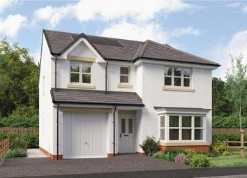 "Thumbnail 4 bedroom detached house for sale in ""Fletcher"" at Brora Crescent, Hamilton"