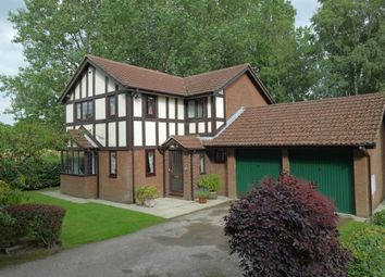 Thumbnail 4 bedroom detached house for sale in The Avenue, Ingol, Preston